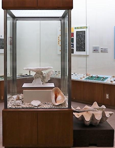 第2展示室写真