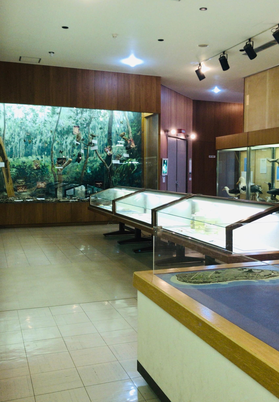 第3展示室写真