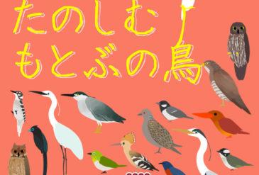 【開催中!】おうちでたのしむもとぶの鳥